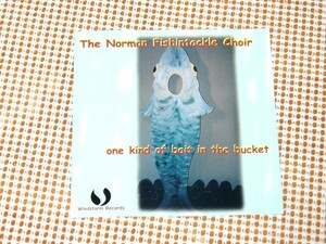 廃盤 The Norman Fishintackle Choir / One Kind Of Bait In The Bucket/ Jim Pulte 在籍 Kim Morrison Johnny Neel 参加 スワンプ 良作