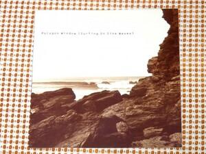 廃盤 UK初出盤 Polygon Window ポリゴン ウィンドウ Surfing On Sine Waves / WARP / APHEX TWIN 変名 傑作/ambient名曲 Quino-phec 収録