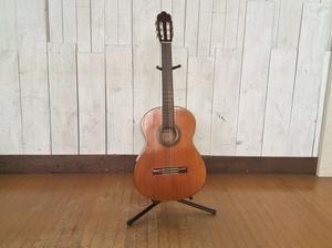 【SAKURA/サクラ/アコースティックギター/クラシックギター/C113】弦楽器演奏フォークガット