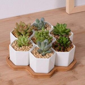 中身入れるだけ◎ 植木 鉢 7個 セット トレイ プランター バルコニー 部屋 室内 多肉 植物 装飾 インテリア 置物 オブジェ オフィス opn202