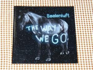 廃盤 Seelenluft The Way We Go / 電子POP 良作/ Jim Reid ( Jesus And Mary Chain ) 参加 / ZONGAMIN DFA HEADMAN 等好きな方にオススメ