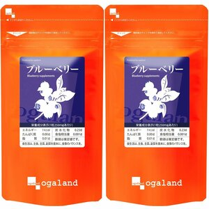 送料無料 ★ オーガランド ブルーベリー(約6ヶ月分)サプリメント ★ 約3ヶ月分×2袋セット