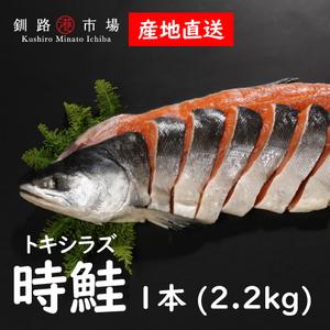 時鮭2.2kg1本(3枚卸切身) ときさけ ときしらず トキシラズ 産地直送 北海道 釧路