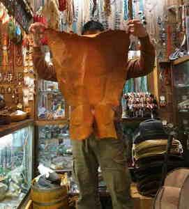 No1,巨大!訳ありウオーターリザード(水大トカゲ)【8000円~】オレンジ色*クラフト材料