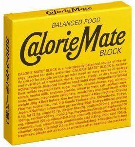 大塚製薬 カロリーメイトブロック チーズ味 4本入 10個入