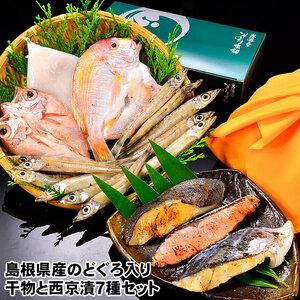 島根の近海地魚、祝い鯛 ( れんこ鯛 ) のどぐろ ( ノドグロ ) 白いか 沖ぎす 干物 と銀ダラ さわら 銀鮭 西京漬 セット