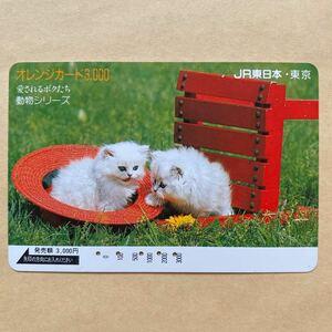 【使用済】 オレンジカード JR東日本 愛されるボクたち 動物シリーズ 猫