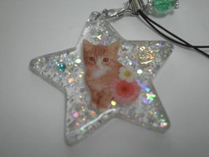 ハンドメイド・レジン ☆子猫☆ 星型ストラップ