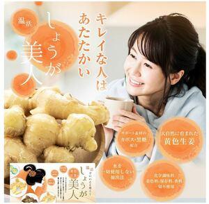 長崎県産しょうが使用 生姜美人 ペースト状 1箱31包入り 化学調味料 着色料 保存料 香料 全て一切不使用 温活