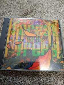 Forest for the trees 輸入盤 BECK ゲスト参加