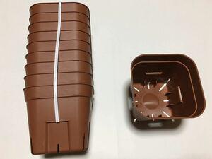 【送料無料】プレステラ 105 サイズ 10個 茶色 ブラウン 新品 多肉植物 スリット鉢 ハオルチア 観葉植物 ポット 鉢