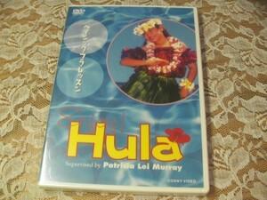 新品 未使用 ENJOY!HULA  ベイシック・フラ・レッスン DVD video フラレッスン