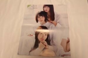 ポスター 欅坂46