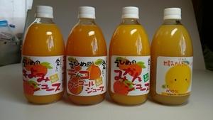 地元道の駅で人気の愛媛県産果汁100%デコタンゴール(しらぬい)ストレートジュース500㎜×12本入