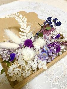 シルバーデージー パープルガーデン*ハーバリウム花材ドライフラワー 花材セット