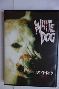 DVD 10枚セット フリッツ・ラング監督 フラー監督 アルトマン監督 キューブリック監督など。