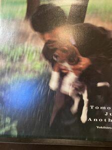 高橋幸宏/Tomorrow's Just Another Day/細野晴臣・坂本龍一/歌詞カード有