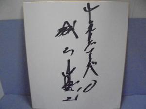直筆サイン色紙 ■城石憲之  サイン  野球