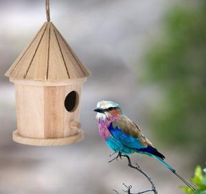 P001  庭木用ぶら下げ型の鳥の巣箱 小鳥を庭に呼び込める 木製でかわいいとんがり屋根型 ガーデニングに
