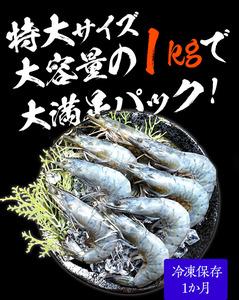 【他の海老より圧倒的に旨味が濃厚!! 有頭 特大サイズ 1kg!!】 海鮮 天使の海老 世界最高品質 刺身 生食