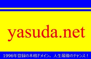 本格ドメイン名【yasuda.net】格安で手に入れる人生最後のチャンス!