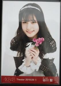 AKB 48 Team 8 Tanikawa St. Theater 2018.09 (1) Monthly Raw Photography Yori