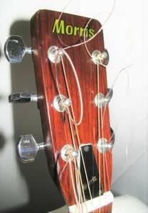Morris  W-18  モーリス  アコースティックギター