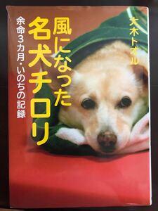 読書感想文!風になった名犬チロリ /岩崎書店/傷あり
