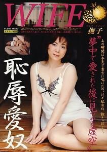 WIFE・撫子(ワイフ・ナデシコ)[ゆうパケット送料無料](s9201)(SG-01)