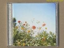 ★即決★ OUR REBEL SONGS ~素晴らしきコアレコードの世界~ -- コア・レコードのレーベル5周年、ベスト盤コンピアルバム、2003年発表