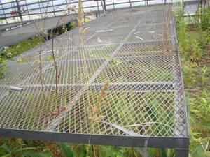 値下げしました 農業用その他作業台 福岡、長さ6m 中古 USED 発送不可 亜鉛メッキ加工 錆びに強い