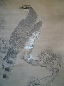 M7003 狩野常信 鳥獣画 古美術 掛け軸 肉筆 蔵出 189cm 54cm コレクターより ゆうパック 80サイズ (0206)
