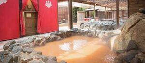 有馬温泉 太閤の湯 チケット割引購入