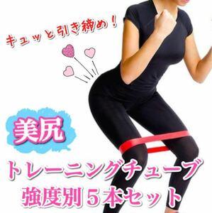 トレーニングチューブ 強度別5本セット フィットネス ダイエット 体幹 美尻 おうち太り エクササイズ ヒップアップ チューブ