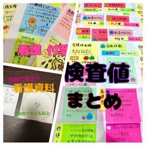 付箋 ノート ★ 検査値 まとめ ★ 看護 実習 資料 セット (^^)