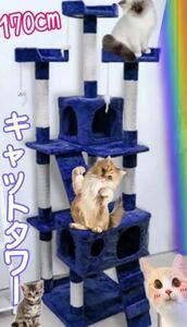 キャットタワー 猫タワー ワイド170cm ファニチャー 置き型 ネイビー