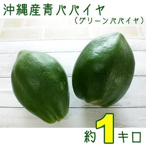 【送料込】沖縄産青パパイヤ約1キロ│グリーンパパイヤでソムタムなどにいかが?