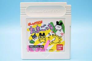 任天堂 ゲームボーイ ゲームで発見!!たまごっち バンダイ Nintendo Game Boy Game!! Tamagotchi Bandai