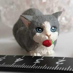 ミニチュア 人形用 ペット グレー 苺と猫 ネコ ねこ ミニ ジェニー momoko バービー ブライス ピュアニーモ タミーちゃん 1/6ドール