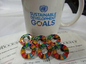 SDGs ピンバッジ 6個(4840円税込・送料無料・国連ブックショップ購入)ラバークラスプ再生素材(新品未使用)(保存袋付6枚き)UN16