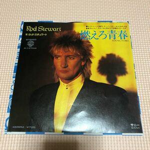 ロッド・スチュワート 燃えろ青春 国内盤7インチシングルレコード