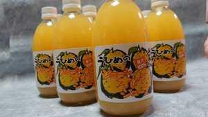 地元で人気のみかんジュースシリーズ!!愛媛県産河内晩柑(和製グレープフルーツ)500㎜×12本入り。少量希少価値あり。