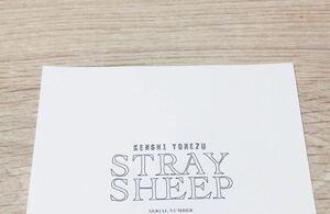 即決 送料無料 米津玄師 アルバム STRAY SHEEP ストレイシープ 封入 シリアルナンバー のみ 初回限定 CD おまもり盤 通常盤 アートブック盤