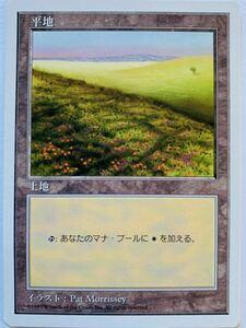 5ED 平地 B絵柄 日本語1枚 第5版 基本土地 基本地形 人気絵柄 希少 複数可