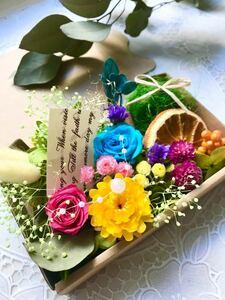 ビタミンカラートロピカル*ハーバリウム花材ドライフラワー 花材詰め合わせセット