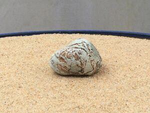 水石 自然石 天然石 ウブ石 盆石 鑑賞石 探石 庭石 盆栽 レイアウト アクアリウム 水槽 s230
