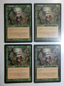 【MTG】天光を求める者 日本語4枚セット テンペスト TMP コモン