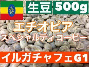 生豆 エチオピア・イルガチャフェ Grade-1スペシャルティーコーヒー500g
