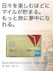 【正規紹介】デルタスカイマイル アメリカンエキスプレスゴールドカード 特典 16,000マイル AMEX 審査緩 ブラック 外国籍 低収入 主婦 歓迎