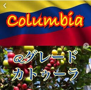 自家焙煎コーヒー コロンビアQグレード200g